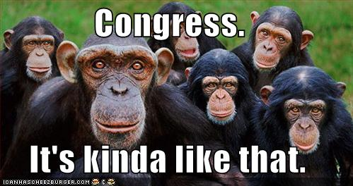 funny-pictures-congress-monkeys.jpg